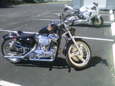 1989 Harley Davidson Sportster 1200 Custom