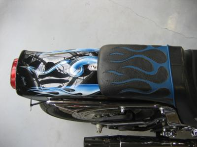 1996 FXSTC Harley Davidson Softtail Custom Rear Fender Art Graphics