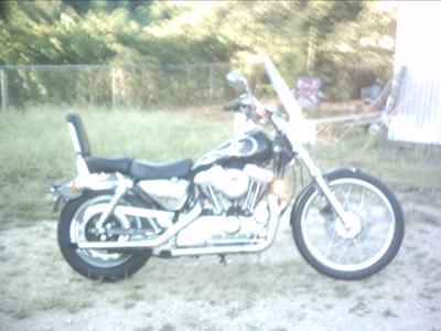 1997 Harley-Davidson Sportster 1200 Custom XL 20K