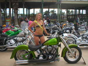 Custom 1997 Harley Davidson Fatboy for Sale - Planet Green Pagan Gold House of Kolor Motorcycle Paint (this photo is for example only; please contact seller for pics of the actual motorcycle for sale in this classified)