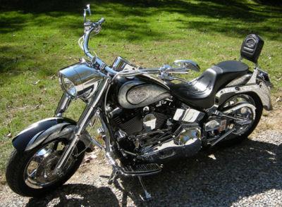 2002 Custom Harley Davidson Fatboy