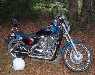 Blue on Black 2004 Harley Davidson 1200 Custom