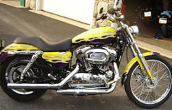 2005 harley davidson 1200 1200c sportster yellow flames custom paint graphics