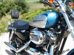 2005 Harley Davidson 1200 Custom Sportster