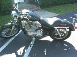 2005 Harley Davidson Sportster 1200 Low