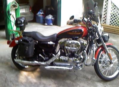 Orange and Black  2005 Harley Sportster 1200 XLC