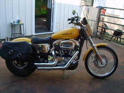 2006 HARLEY SPORTSTER 1200C XL