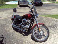 Burgundy Candy Brandy Wine 2006 Harley Davidson Sportster 883