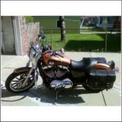 2008 Harley-Davidson Sporster Anniversary Edition HD
