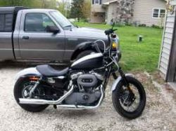 Black and White 2008 Davidson Harley Nightster