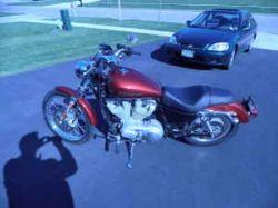 Burgundy 2008 Harley Davidson Sportster 883