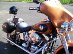 2008 Harley Sportster Softail