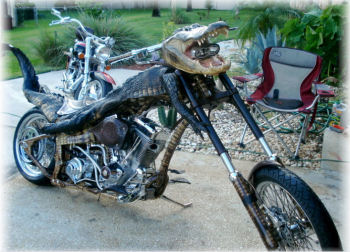 custom alligator chopper straight out the swamps of Louisiana