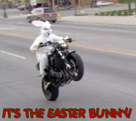 funny motorcycle pictures
