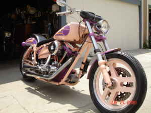 Custom FXR Harley Davidson Motorcycle