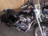 2006 Harley Sportster XL883 Low