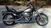 2007 Harley Davidson Softail Custom ridden and maintained like royalty