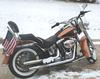 2008 Harley Davidson Softail for Sale 08 FLSTN, 105th Anniversary edition Softail Nostalgia edition