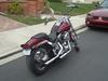 1991 Harley Davidson Softail Custom