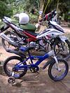 Used Yamaha  LC 135 Motorcycle for Sale