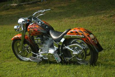 2000 Custom Harley Fatboy Custom Signed Motorcycle Paint Job (this photo is for example only; please contact seller for pics of the actual motorcycle for sale in this classified)